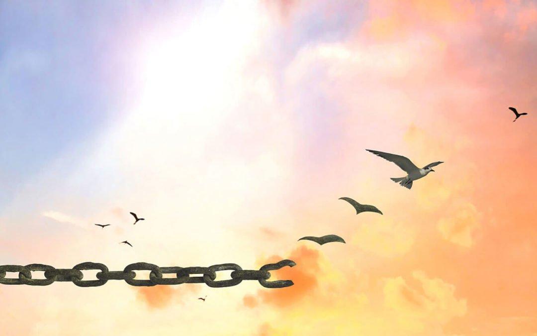 La liberté est l'ennemie N°1 de l'islam